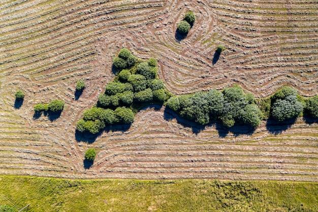 Bovenaanzicht van tractor met schudders, gemaaid hooi drogen