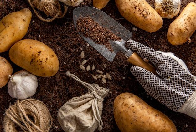 Bovenaanzicht van tuingereedschap met aardappelen en knoflook