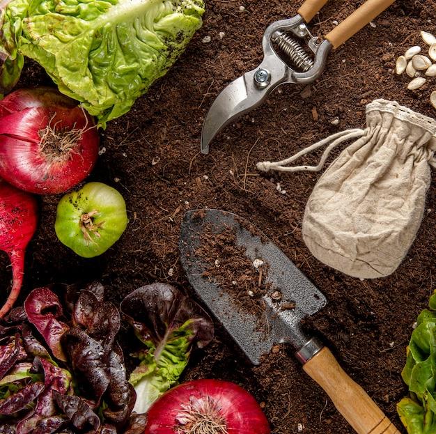 Bovenaanzicht van tuingereedschap met groenten