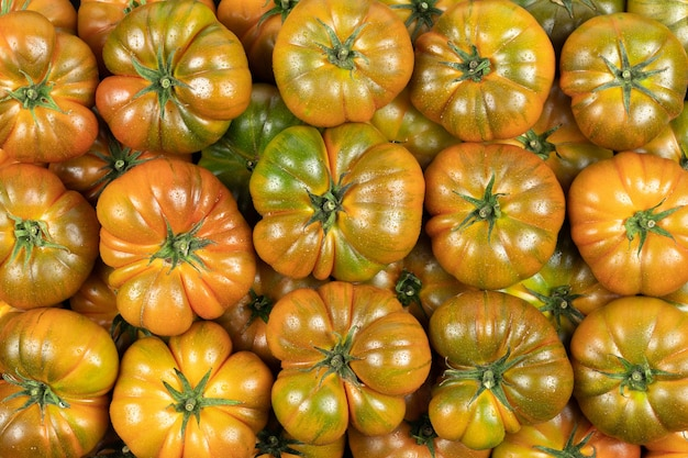 Bovenaanzicht van veel groene tomaten van het type raf, met waterdruppels. supermarkt.