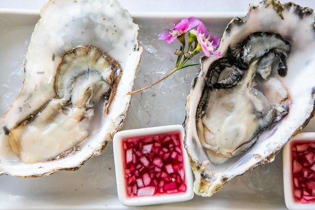 Bovenaanzicht van vers geopende oesters op ijs