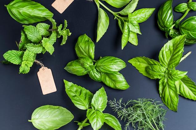 Bovenaanzicht van verschillende aromatische kruiden