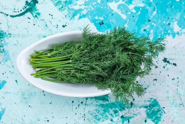 Bovenaanzicht van verse groenten geïsoleerd binnen plaat op helderblauwe, groene blad product voedsel maaltijd groente
