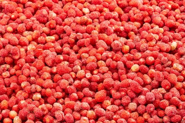 Bovenaanzicht van verse wilde aardbeien.