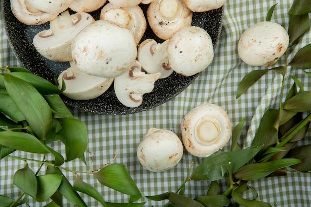 Bovenaanzicht van verse witte champignons op een koekenpan en kegels met groene bladeren op geruite stof