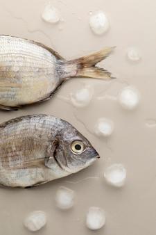 Bovenaanzicht van vis met ijsblokjes