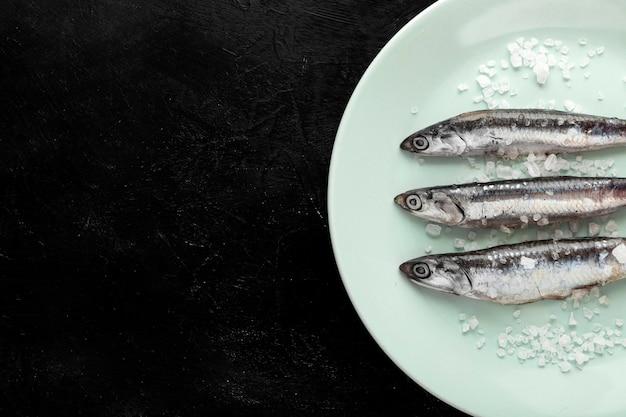 Bovenaanzicht van vis op plaat met zout en kopie ruimte