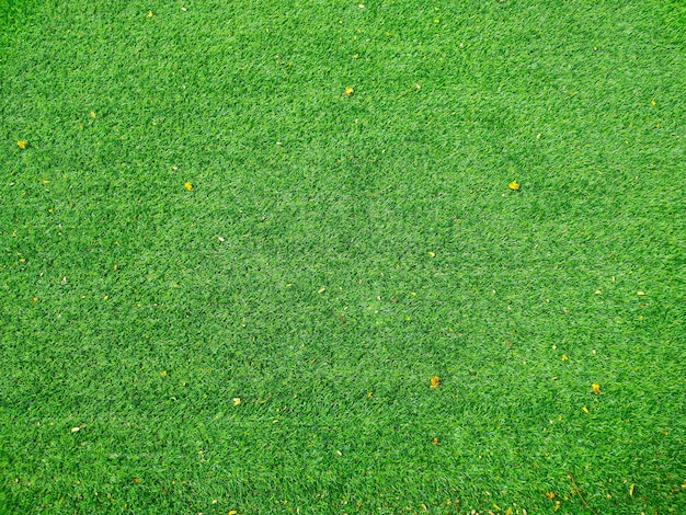 Bovenaanzicht van voetbalveld of voetbalveld textuur achtergrond groen gras in de zomer