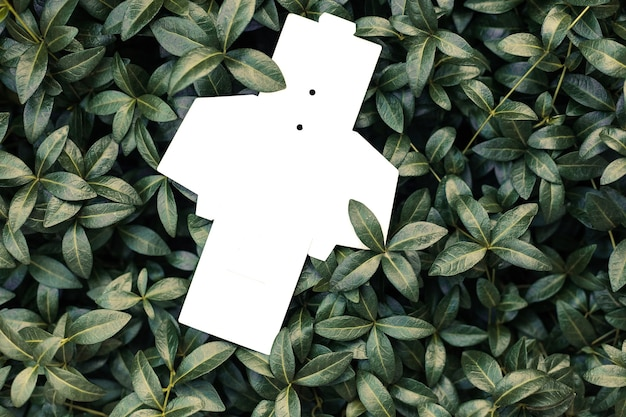 Bovenaanzicht van witte lege ongevouwen doos voor accessoires of tag voor kleding op de achtergrond van maagdenpalm ...
