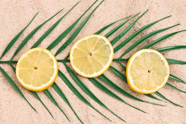 Bovenaanzicht van zomer concept met citroenen