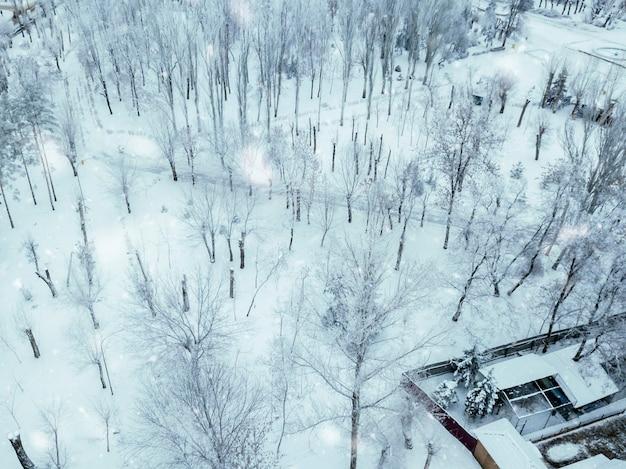 Bovenaanzicht vanuit de lucht van besneeuwd winterbos