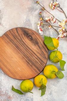 Bovenaanzicht verse mandarijnen abrikozenbloesem tak een snijplank op naakte achtergrond