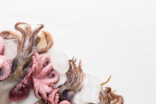 Bovenaanzicht verse octopus klaar om te koken