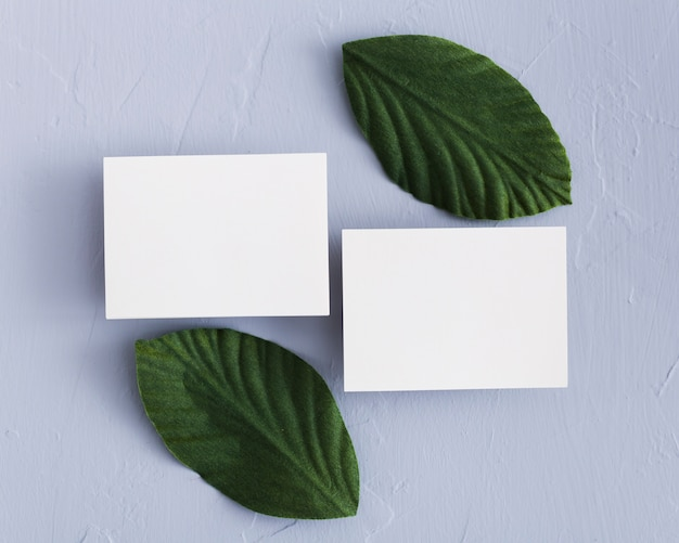 Bovenaanzicht visitekaartjes met groene bladeren
