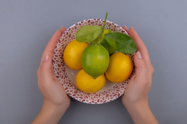 Bovenaanzicht vrouw met plaat met citroenen en limoen op grijze achtergrond