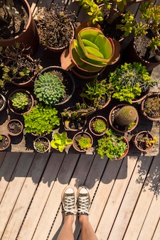 Bovenaanzicht vrouw stond naast haar planten