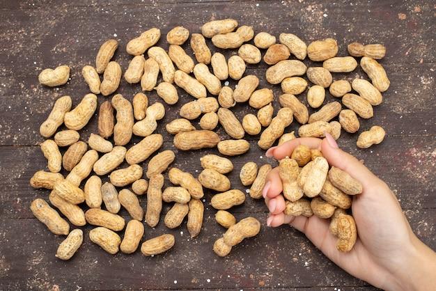 Bovenaanzicht vrouwelijke noten houden op bruin