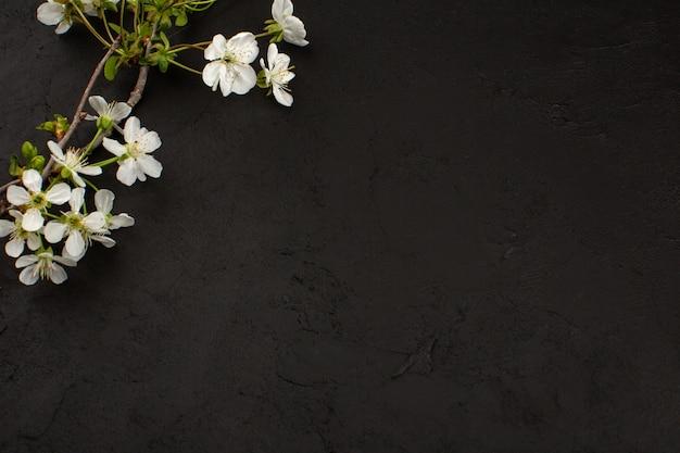 Bovenaanzicht witte bloemen op de donkere achtergrond