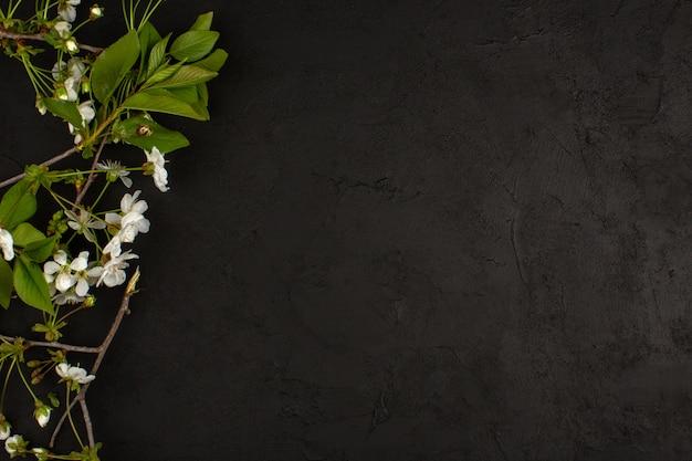 Bovenaanzicht witte bloemen op de donkere vloer