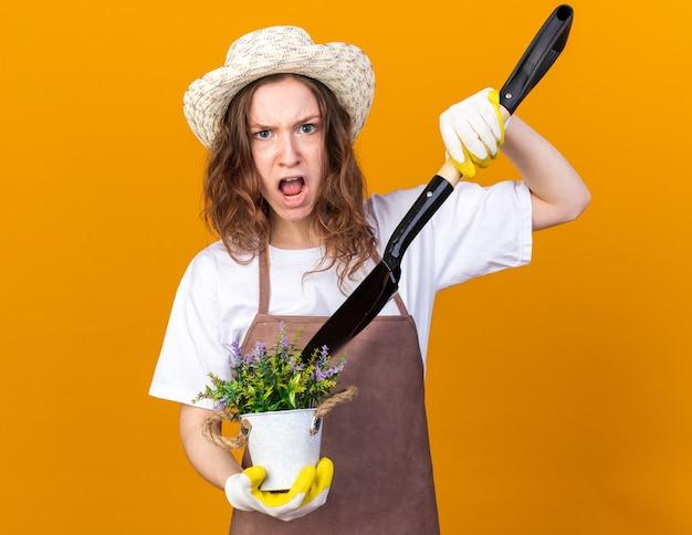 Boze jonge vrouwelijke tuinman die een tuinhoed draagt met handschoenen die een bloem in een bloempot houdt met een spade geïsoleerd op een oranje muur