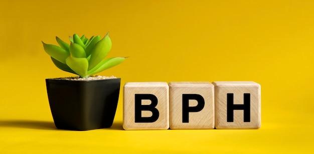 Bph-tekst op een geel oppervlak. houten blokjes en bloem in een pot.