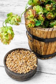 Branch bier hop