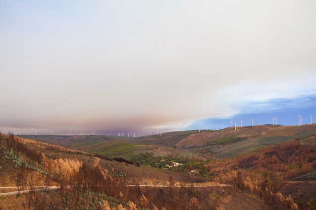 Brand in bergen in portugal