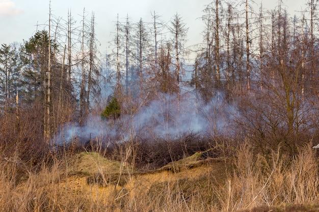 Brand in het bos bij droog weer