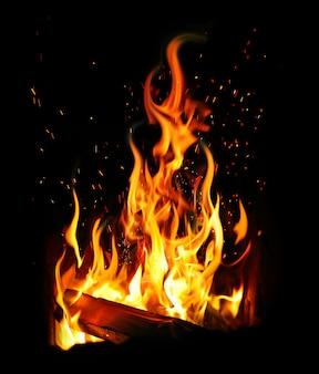 Brandend houtblok en vuur