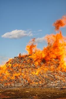 Brandend reusachtig vuur tegen de blauwe hemel.