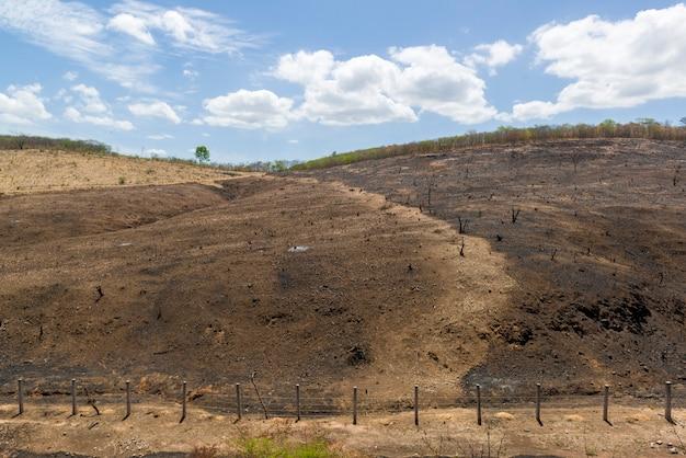 Brandende ontbossing van het braziliaanse caatinga-bioom in barro ceara, brazilië op 21 december 2020
