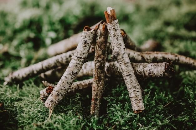 Brandhout voor het vreugdevuur op mos
