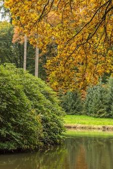 Brede opname van een park met een gigantische struik en bomen in de omgeving