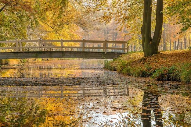 Brede opname van een park met een kalm meer en een brug omgeven door bomen
