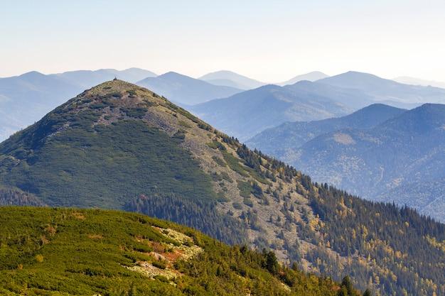 Breed panorama van groene bergheuvels bij zonnig helder weer. karpatisch bergenlandschap in de zomer. uitzicht op rotsachtige pieken bedekt met groene pijnbomen. schoonheid van de natuur.