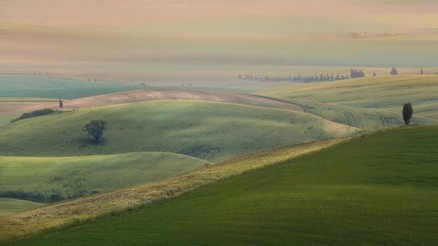 Breed schot van met gras begroeide heuvels met bomen onder een bewolkte hemel