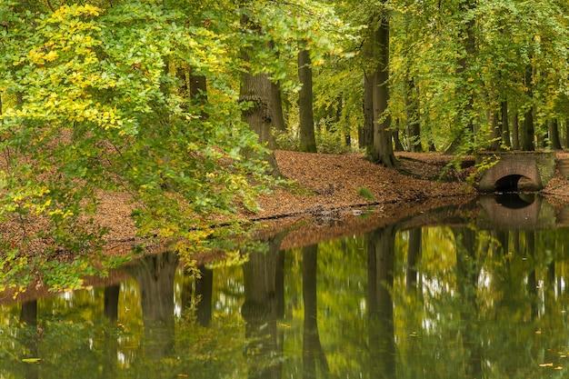 Breed shot van een meer in een park vol bomen en een stenen brug op een bewolkte dag