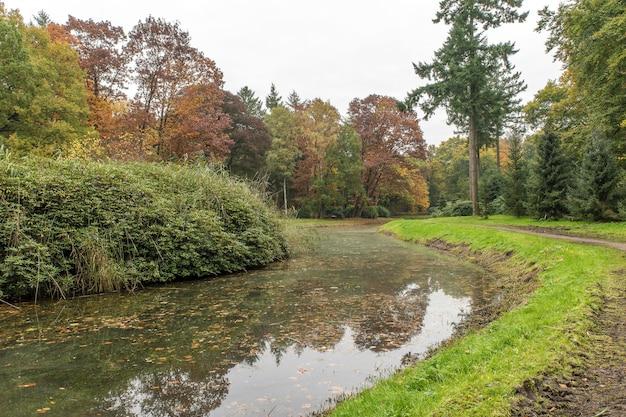 Breed shot van een meer in een park vol bomen op een bewolkte dag