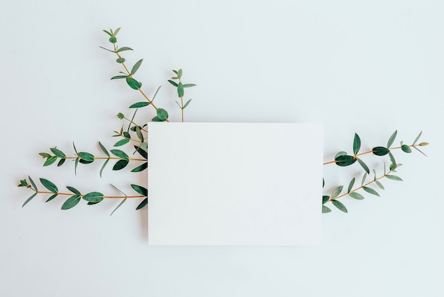 Briefkaart op de plant