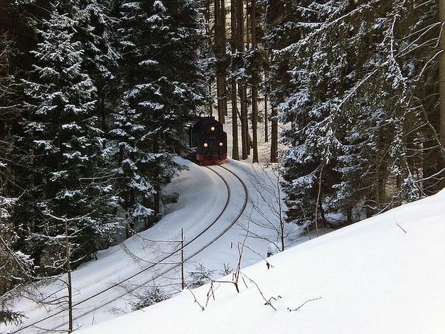 Brocken hars smalle loco spoorbreedte trein