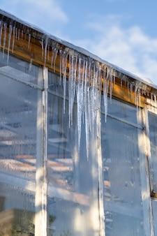 Broeikasgassen van de botanische tuin tijdens een vroege lente, ijspegels die op een dak op zonnige dag hangen.