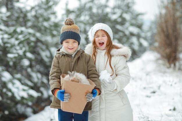 Broer en zus kinderen lopen samen door het bos in de sneeuw en dragen een doos met een konijn erin