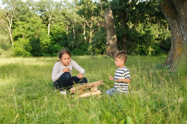 Broer en zus leren een kampvuur te maken in het zomerveld buiten. familie wandeling. gelukkig gezin. hoge kwaliteit foto