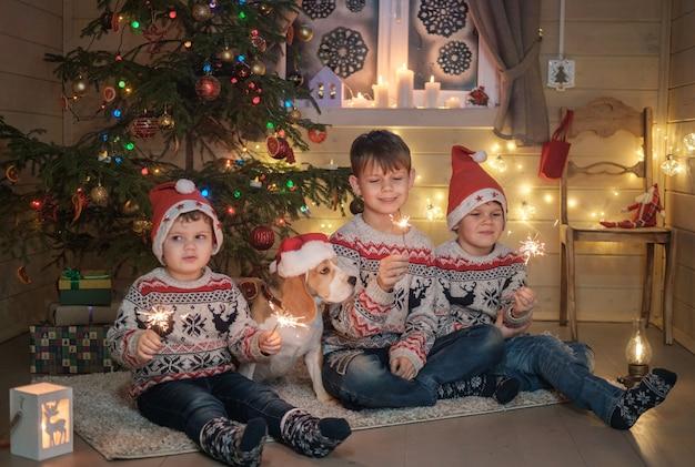 Broers in kerstmutsen en een beagle hond licht sterretjes in de buurt van de kerstboom