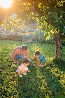 Broertje en zusje planten zaailingen met hun vader in een prachtige lentetuin bij zonsondergang. nieuw leven. red het milieu. zorgvuldige houding ten opzichte van de omringende wereld en natuur.