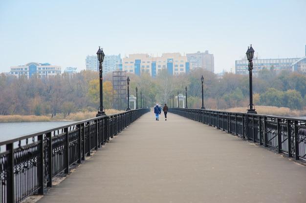 Brug met lantaarns langs de rivier op de achtergrond van de stad