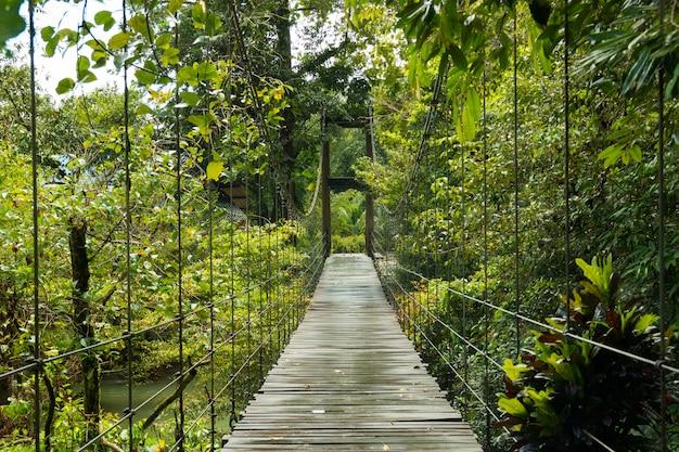 Brug naar de jungle, khaolak - nationaal park lumru