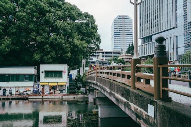 Brug over de rivier in de stad