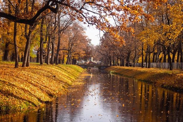 Bruggen stad herfst park. gouden herfst. herfst in het park. geel blad.