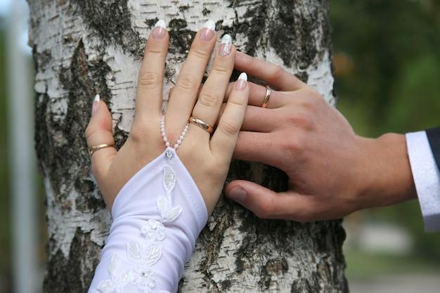 Bruid en bruidegom laten hun handen zien terwijl ze trouwringen dragen